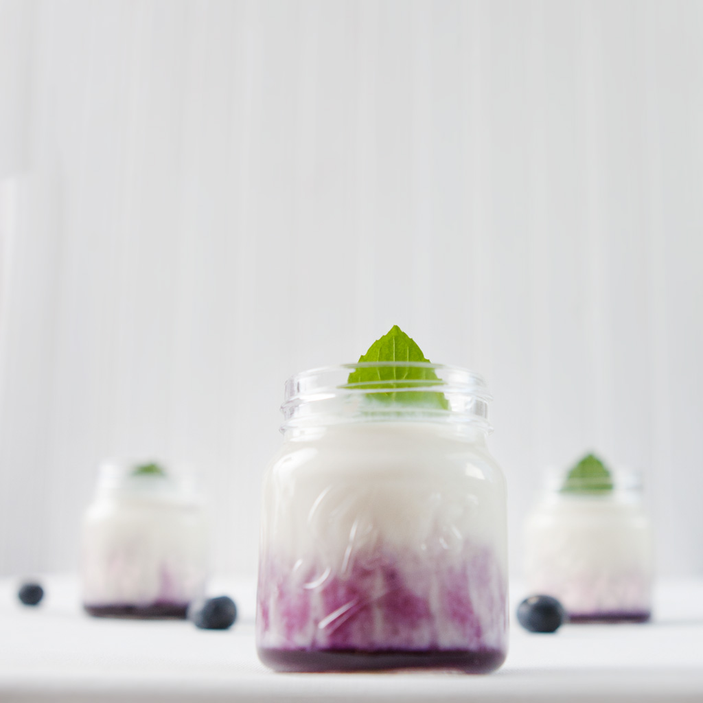 Blueberry Coconut Shooter's
