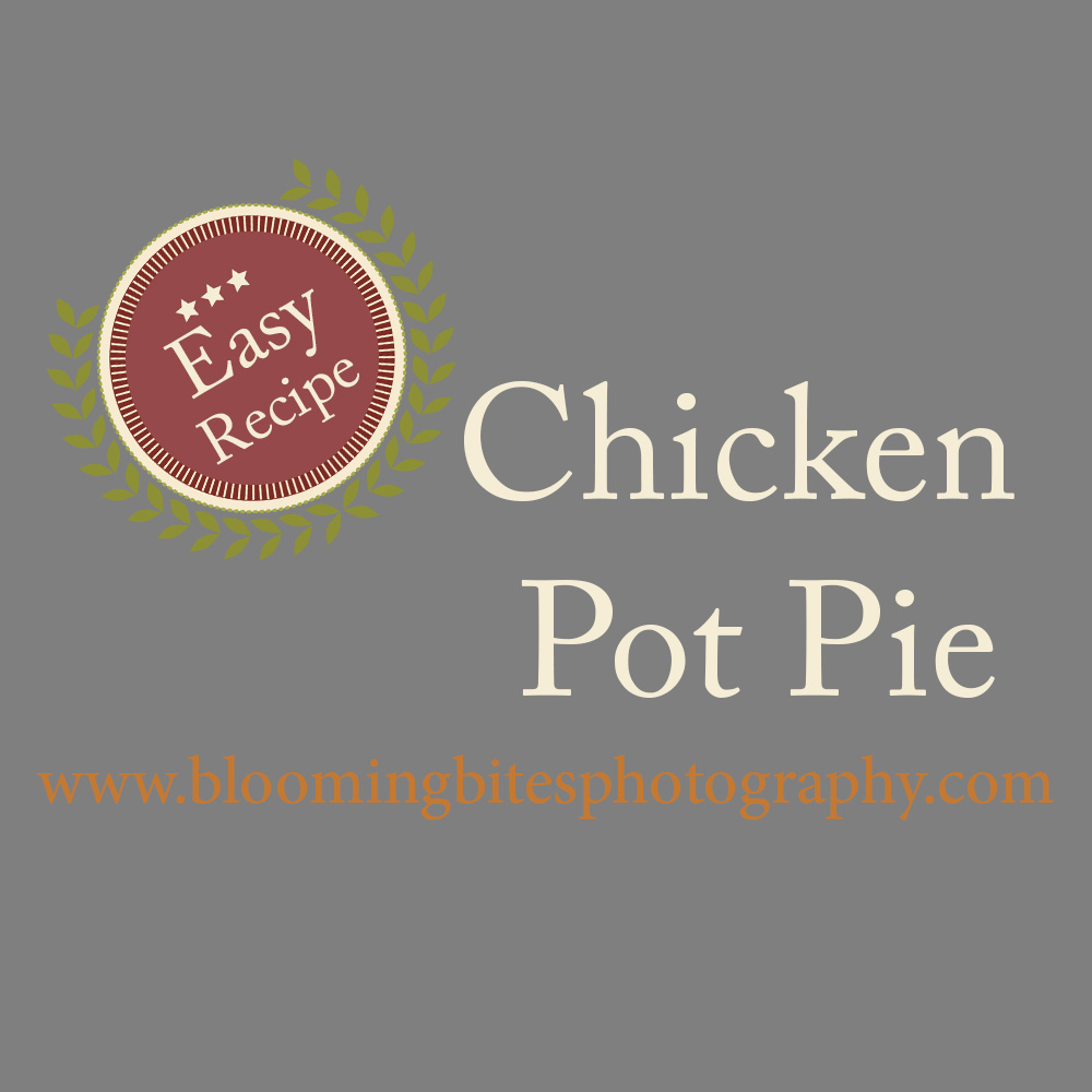 Easy Chicken Potpie 0005